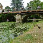 Le Loir à La Flèche commune en Sarthe 4