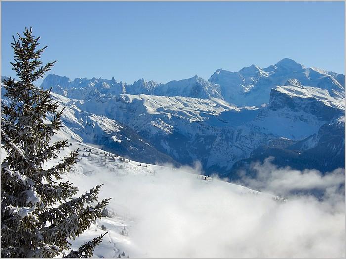 Le massif du Mont Blanc vu du Ranfoilly