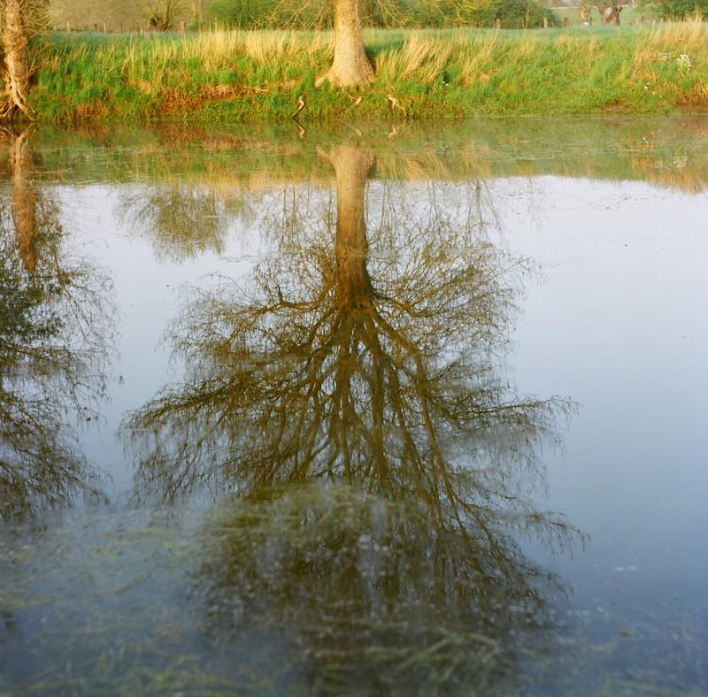 le matin au bord de l'eau