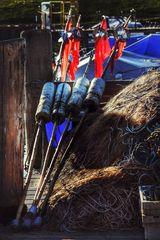 Le matin au quai de pêche