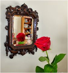Le miroir à la rose