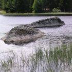 Le monstre du lac de Charpal (Lozère)