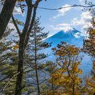 Le mont Fuji 2