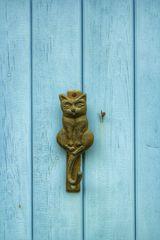 Le petit chat de porte