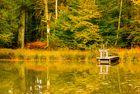 Le petit étang 2