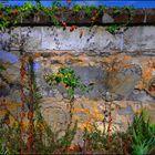 Le petit mur