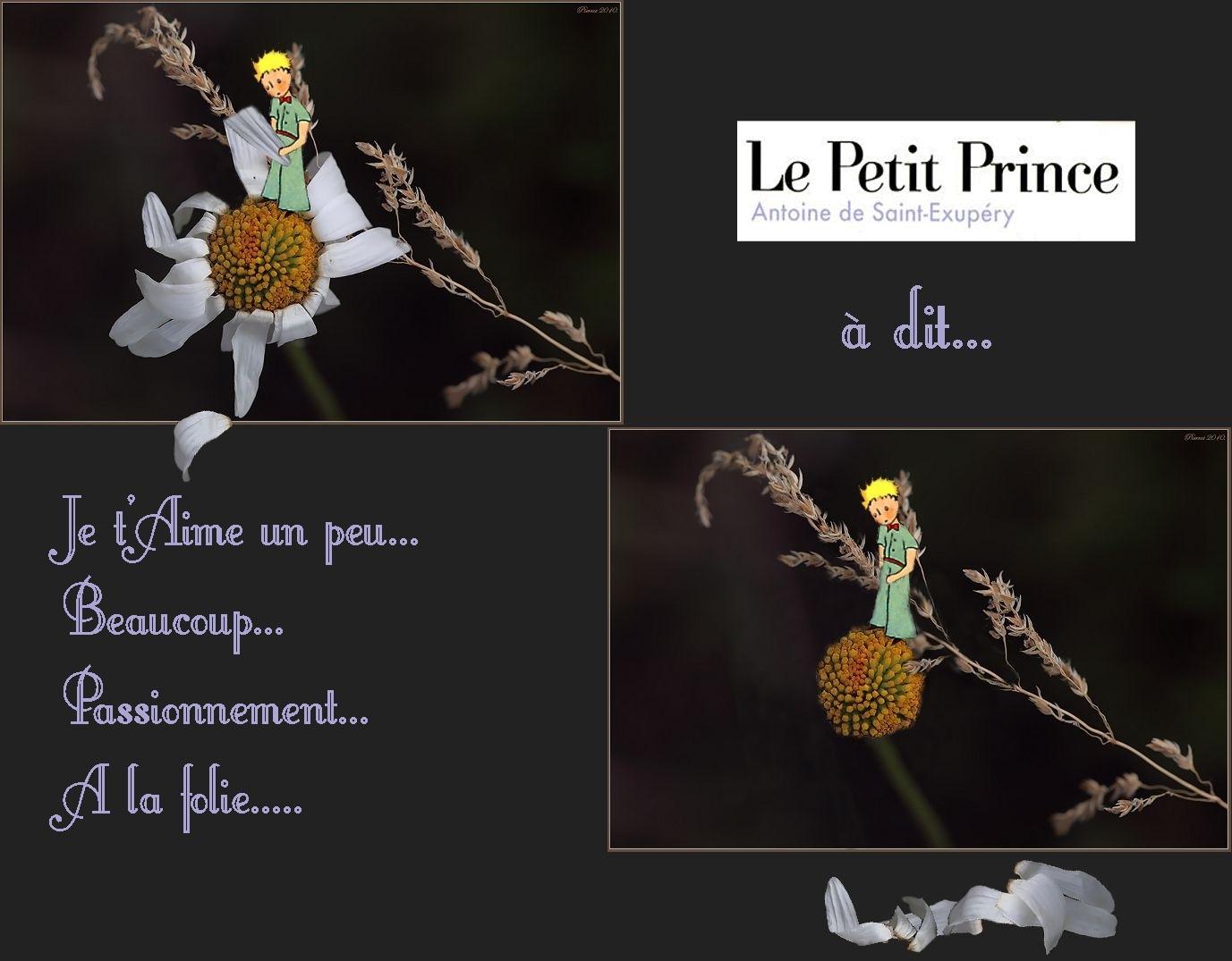 Le Petit Prince a donc dit