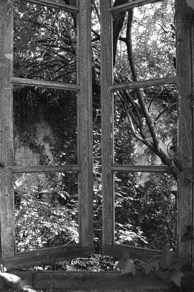 Le Platier, maison de Marguerite Duras, mai 2009