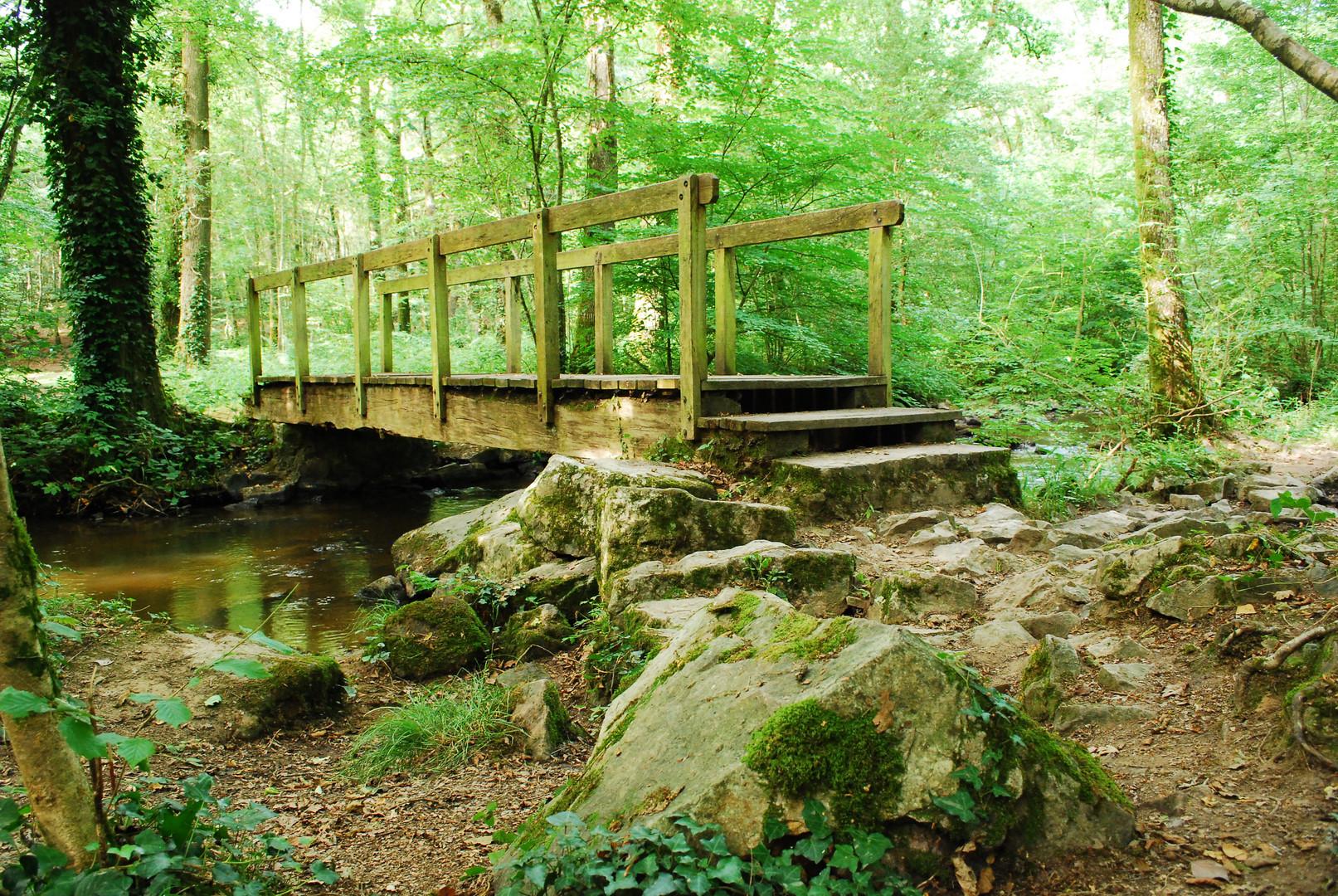 Le pont de bois