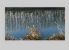 Le prime foschie sul fiume....