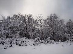 Le revermont sous la neige 3