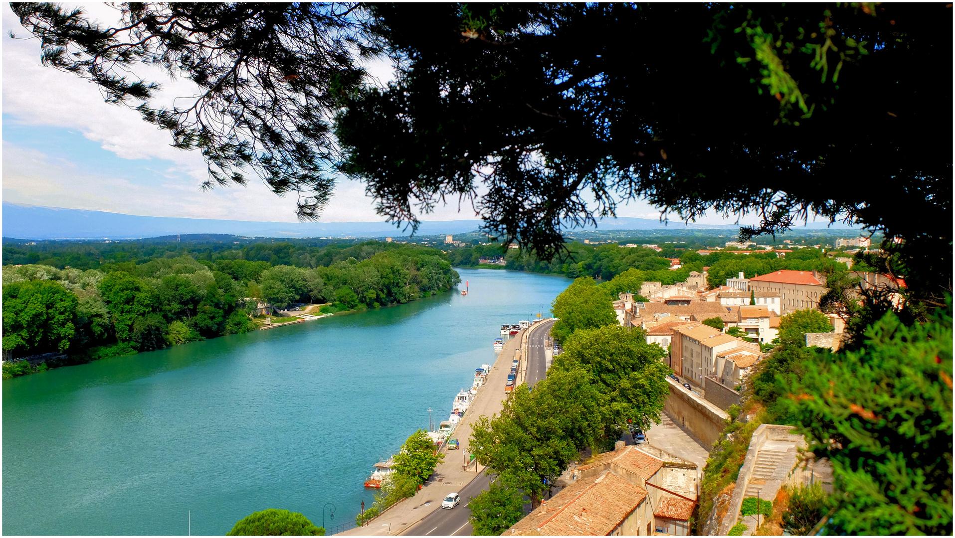Le Rhône à Avignon