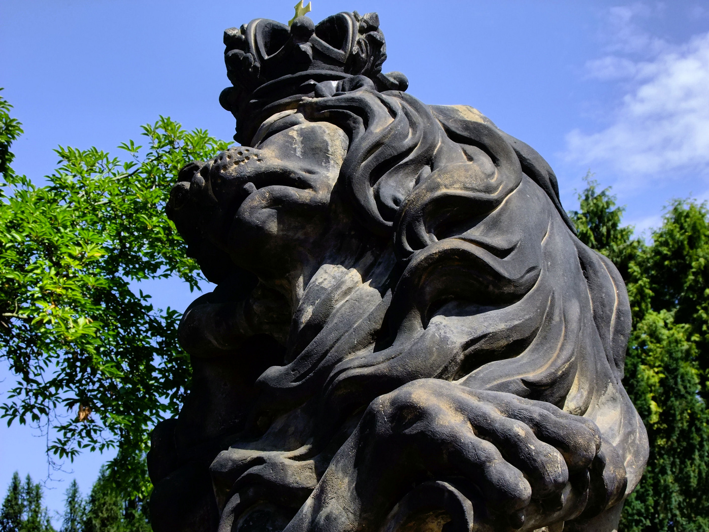 Le roi-lion