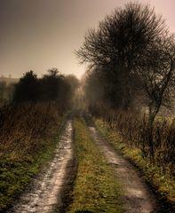 Le sentier d' Orcival, en Auvergne