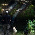 Le Sentier © Tous droits réservés