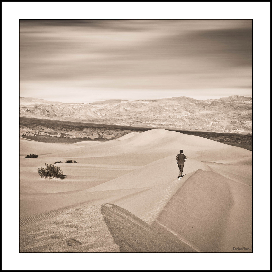 Le silence du desert