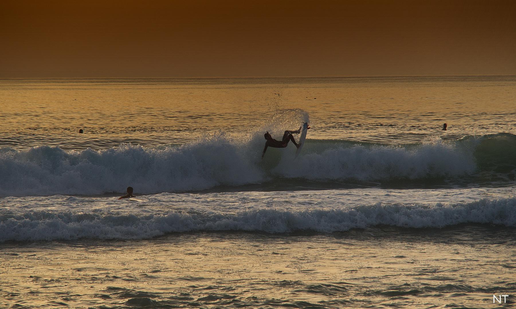 Le Surfer.
