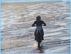 .....Le temps de quelques instants, un intrus sur la plage...e..