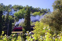 Le Train à vapeur des Cévennes ....