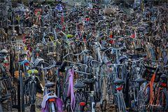 le vélo in Maastricht ....