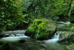 Le verdi acque di Monte Gelato