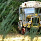le vieux bus caché