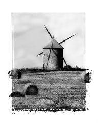 Le  vieux  moulin.