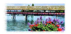 Le vieux pont de Lucerne