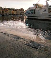 Le Vieux-Port déborde...