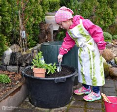 Lea, Kräuter wurden gepflanzt