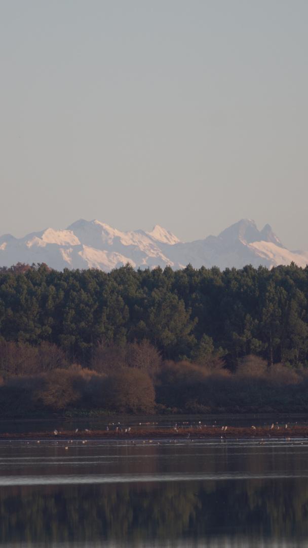 l'eau , la forêt, la montagne