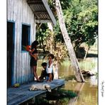 Leben am Amazonas