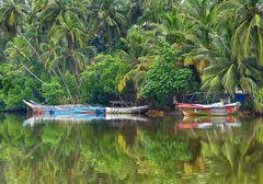 Leben an der Koggala Lagoon