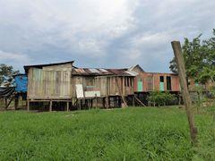 Leben im Amazonasgebiet 1