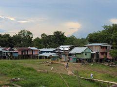 Leben im Amazonasgebiet 3