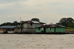 Leben im Amazonasgebiet 4
