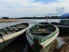 Leben im Amazonasgebiet 6