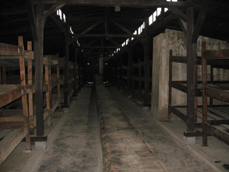 Leben in Auschwitz (2)