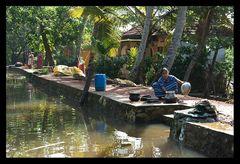 Leben in den Backwaters