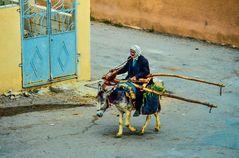 Leben in Shaga..     .120_4270