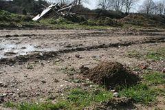 Leben mit dem Braunkohletagebau: Schlechte Zeiten für das Leben im Untergrund