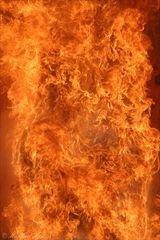 "LEBENSGEFAHR - ""Fett-Explosion"" (4)"