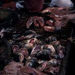 Lebensmittelmarkt in Guangzhou (China)