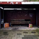 Lebensraum Bushaltestelle