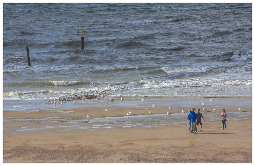 Lebensraum Nordseestrand - oder: ...voll krass, ey, Alder, ich schwör... !