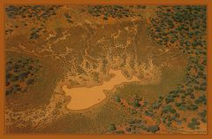 Lebensraum...einer outback-Kuh