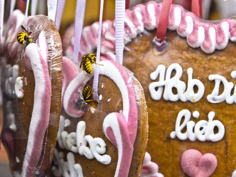 """Lebkuchen mit  """"Stich"""" :-)"""