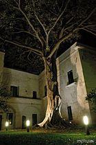 Lecce... dorme