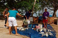 Leckeren Fisch kann man nicht nur auf dem Markt oder am Hafen kaufen...