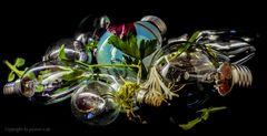 Leckeres, seltenes Birnenkompott, an zartem Blattsalat nur bei picture-e
